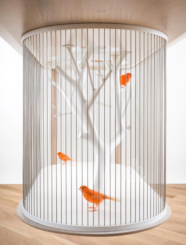 gregoire-de-lafforest-cage-archibird-02
