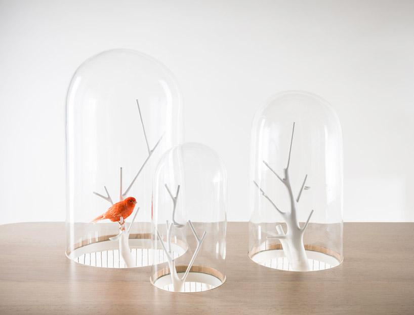 gregoire-de-lafforest-cage-archibird-04