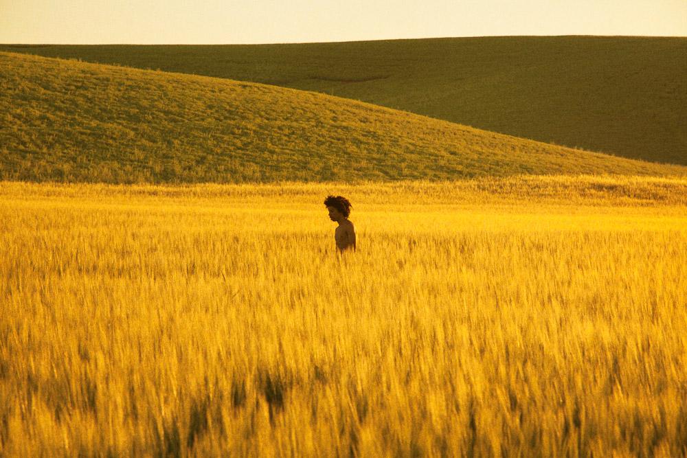 RM_goldengrassland_2013_30x45_web1