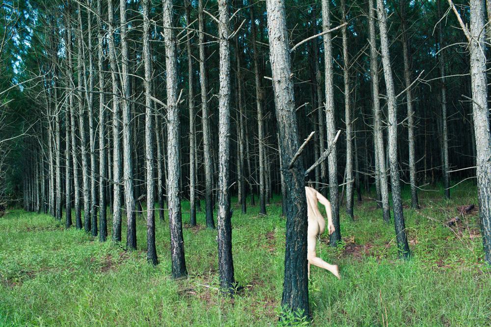 RM_treeprocession_2013_48x72_web1