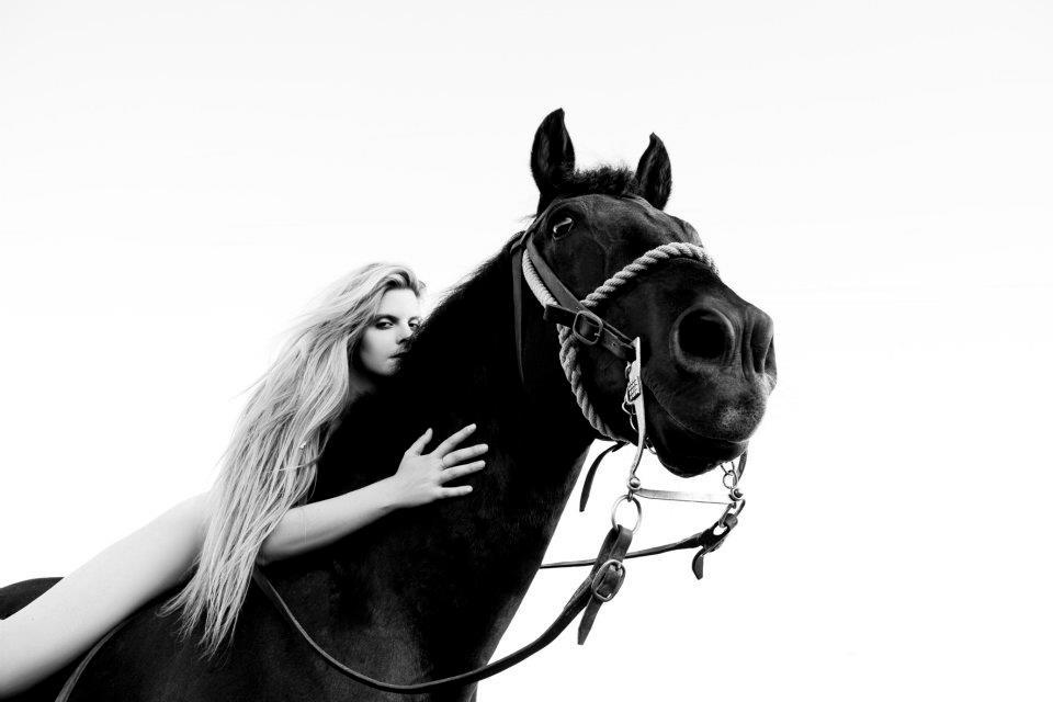 pino-leone-horse-cowboyzoom
