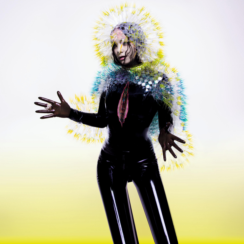 Björk Retrospektive im Museum of Modern Art (MoMA)