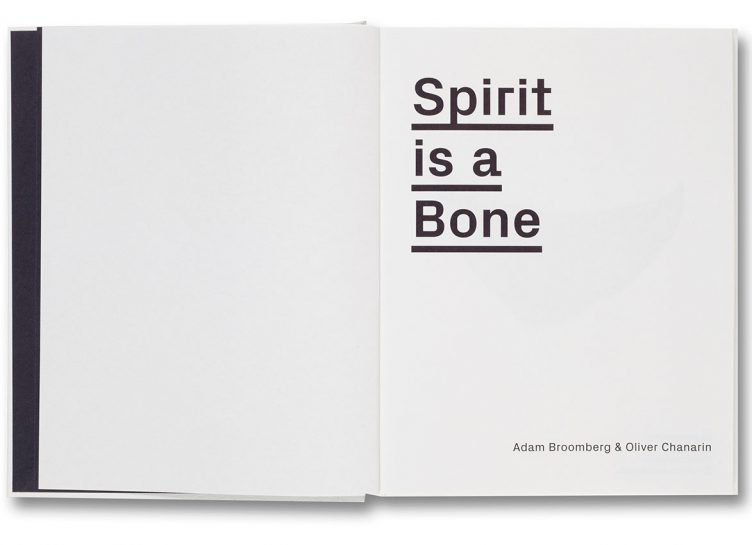 Spirit-is-a-bone_6