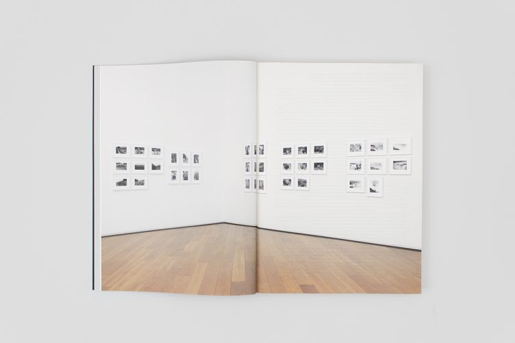 agnes-denes-work-1969-2013-003
