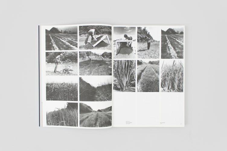 agnes-denes-work-1969-2013-005