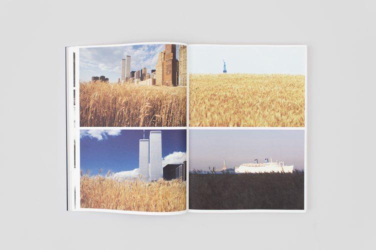 agnes-denes-work-1969-2013-006