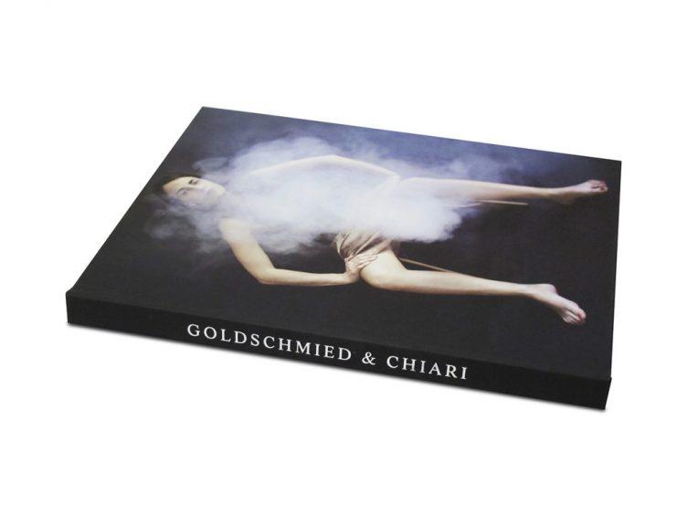 goldschmied-chiari-la-democratie-est-illusion-001