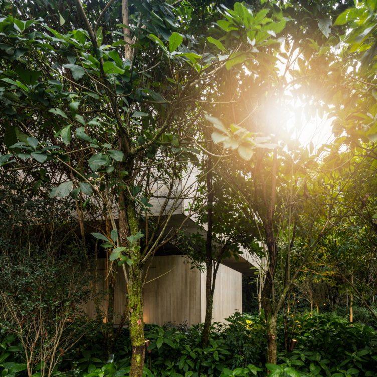 jungle-house-studiomk27-marcio-kogan-samanta-cafardo-006