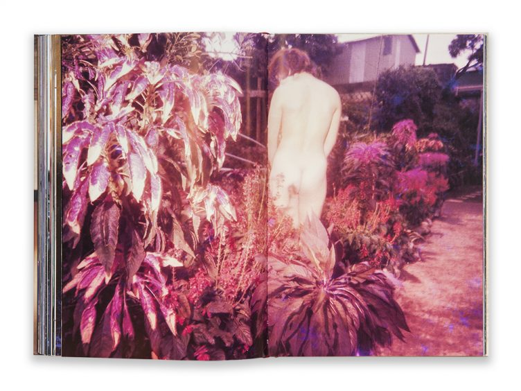 daido-moriyama_in-color-now-and-never-again_content_4