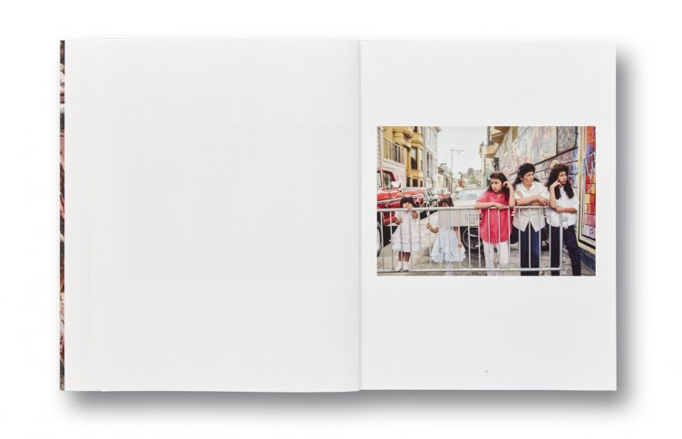 Public Matters by Janet Delaney, Mack Books 010