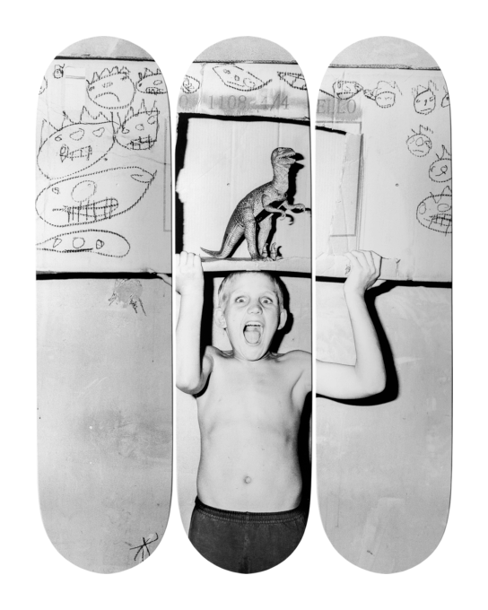 Roger Ballen - Roar, The Skateroom