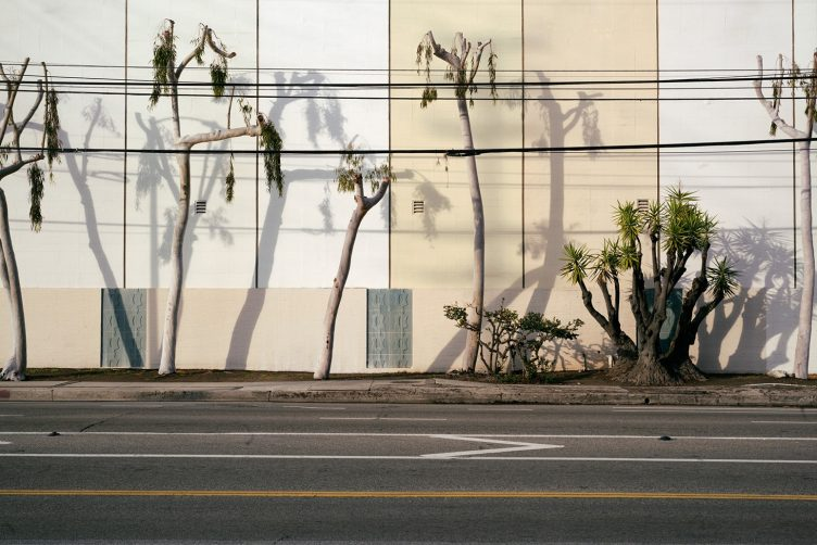 Christian Werner, Los Angeles, 2019 014